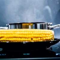 Corn ETF Heading Toward a Bear Market