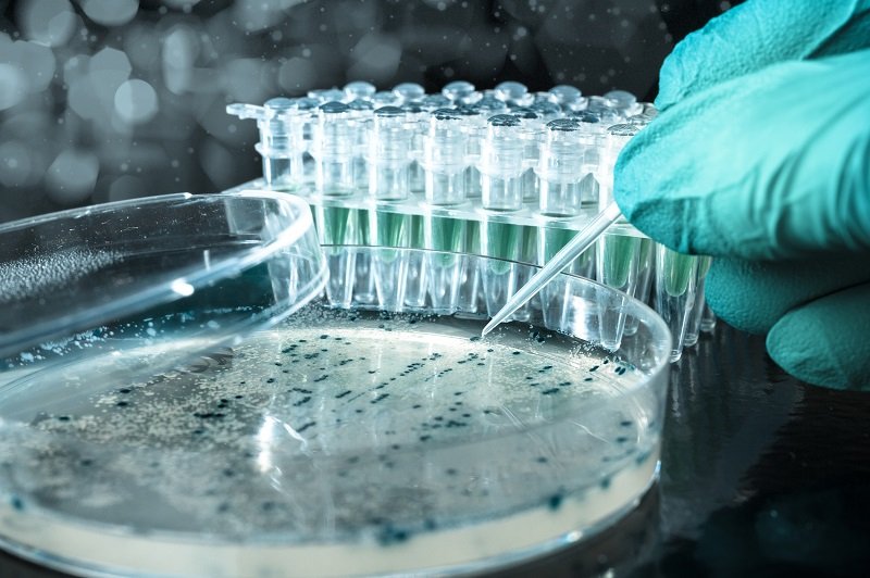 More Support for Biotech ETFs as Value Plays