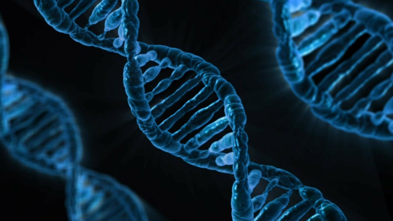 M&A Activity, Passing Drug Trials Help Biotech ETFs Rebound