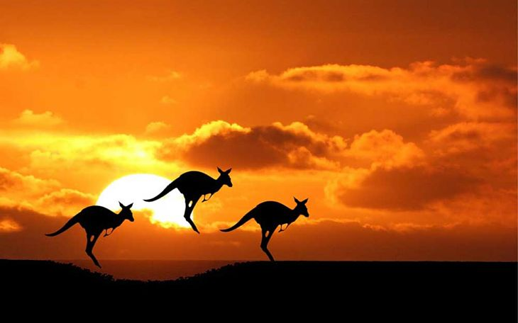 Australia ETF Remains Solid, Up 11.6% in 2016