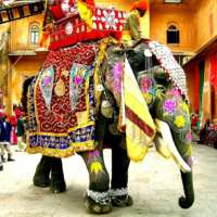 Recent India ETF Sell-Off May Offer Opportunities