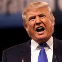 Trump Bursts Biotech ETFs' Bubble