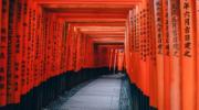 Japan ETFs Still Merit Attention
