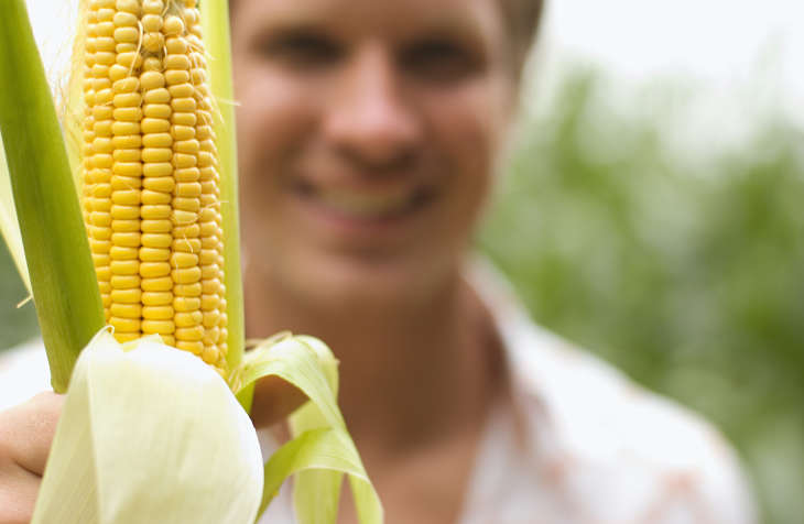Not So Corny This Agriculture ETF is Moving Higher