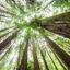 Why You Should Consider ESG as a Driver of Portfolio Risk & Return