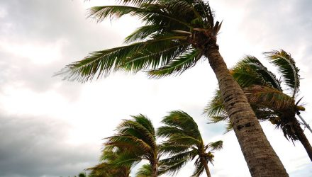 Hurricane Irma Creates Headache for Oil ETFs