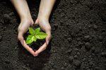 Invest with a Conscious ESG in Bond Portfolios