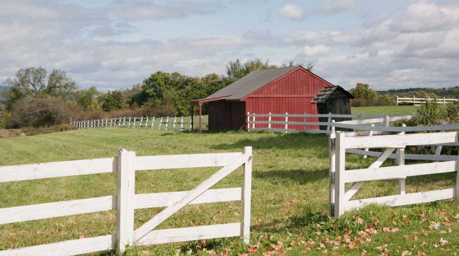 The Case for Farmland Investments