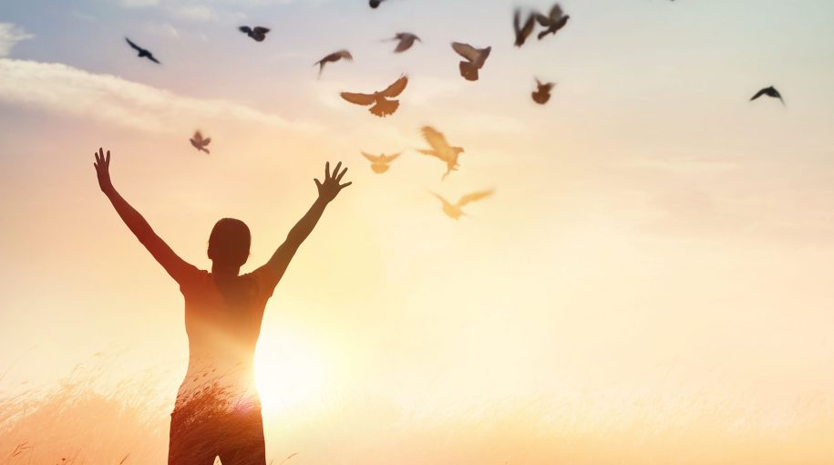 4 Steps Towards Financial Freedom