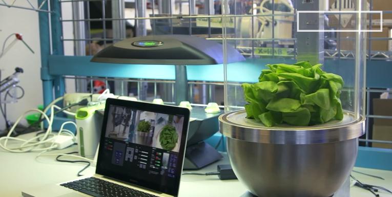 Robotic Gardeners & the Future of Food in Deep Space