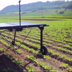 AI Helps This Robot Reduce Herbicide Use
