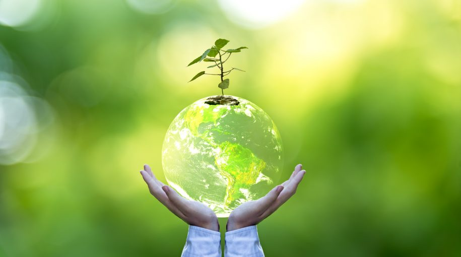 The Evolution and Expansion of ESG Investing