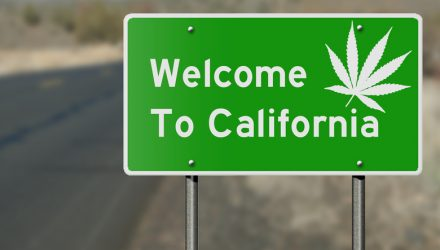 A Golden State Disappointment for Marijuana ETF
