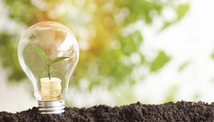 ESG Investing: What Is Sustainable For You