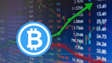 Will Bitcoin Bounce or Continue to Bomb?