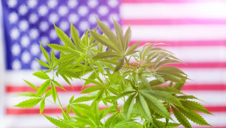 Marijuana ETF as a Midterm U.S. Election Play
