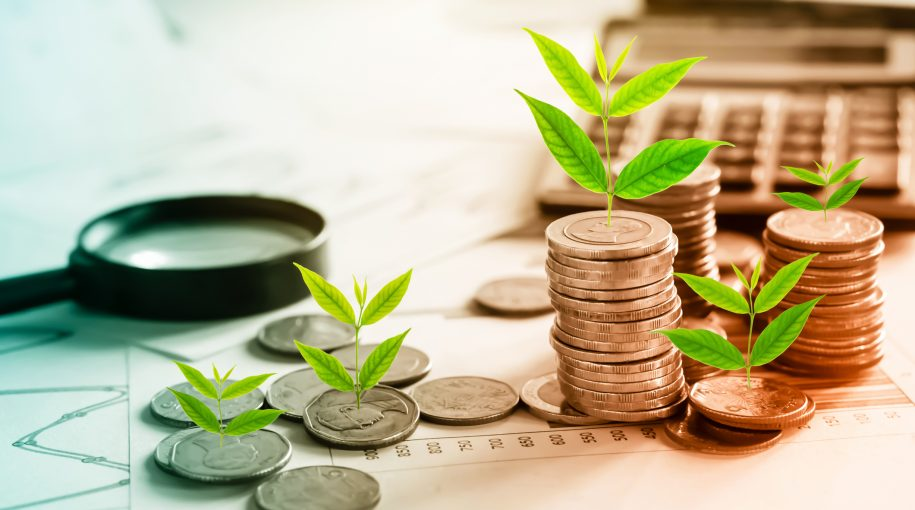 Meeting Sustainable Investing Goals With Green Bonds