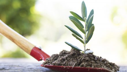 Sustainable ETF Investments That Could Diversify, Enhance a Portfolio