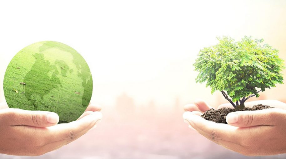 Why We Think ESG Is a Bedrock Investment Issue