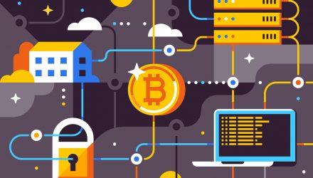 Vanguard bitcoin investment trust