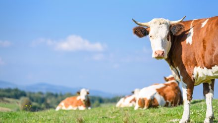 Make The Cash Call With 'COWZ' ETF
