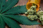 Marijuana ETF Higher as 3 States Pass Cannabis Legislation