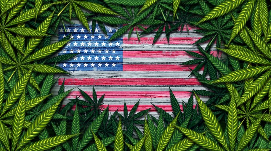 The Timing is Perfect for Second U.S. Marijuana ETF