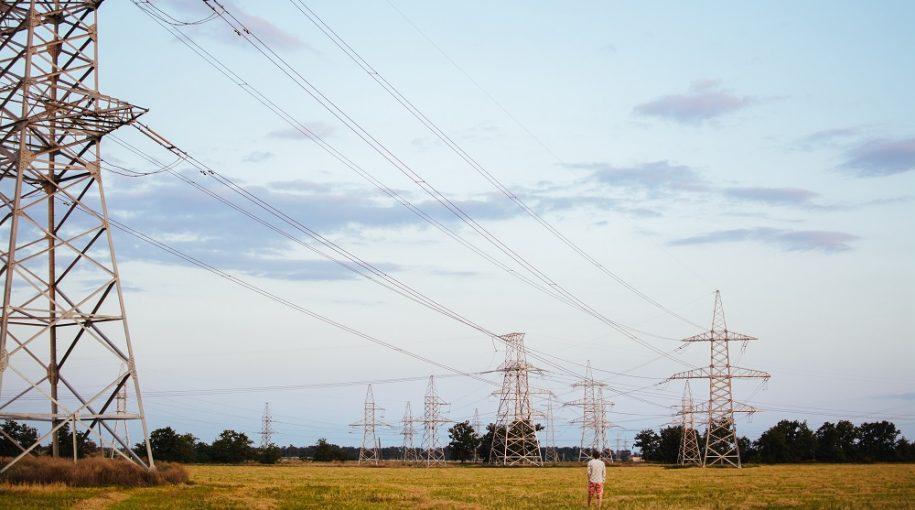 Utilities ETFs Were a Steady Hand in a Shaky Market