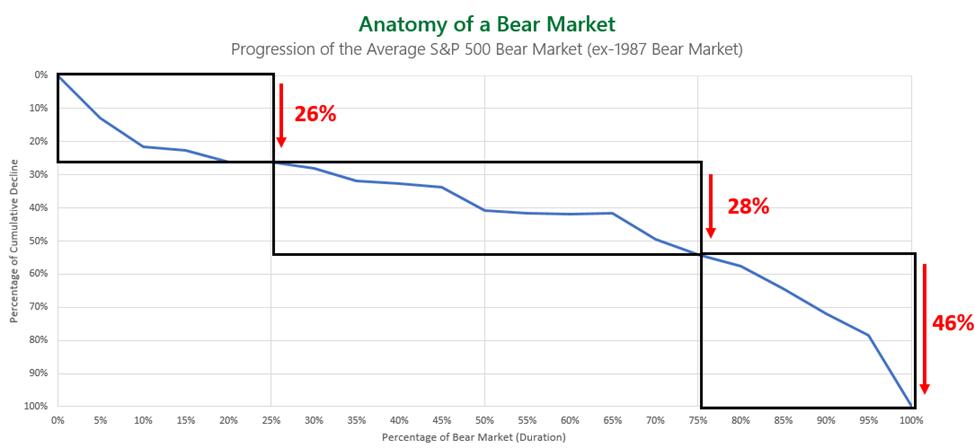 Anatomy Bear Market