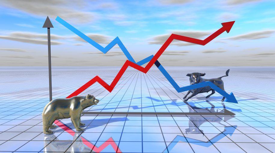 Bull or Bear: How to Prepare 2019 Portfolios for Both