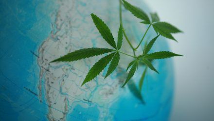 Marijuana ETF Gains on Tilray Partnership for Global Distribution