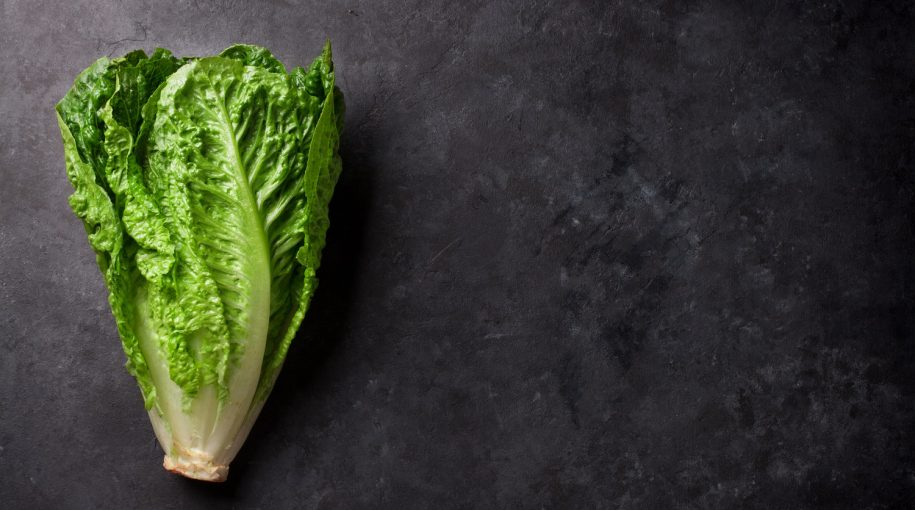 Scared to Eat That Lettuce? Robots & AI Are Coming to the Rescue