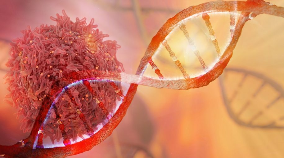 The Power of Genome Editing: What Investors Should Know