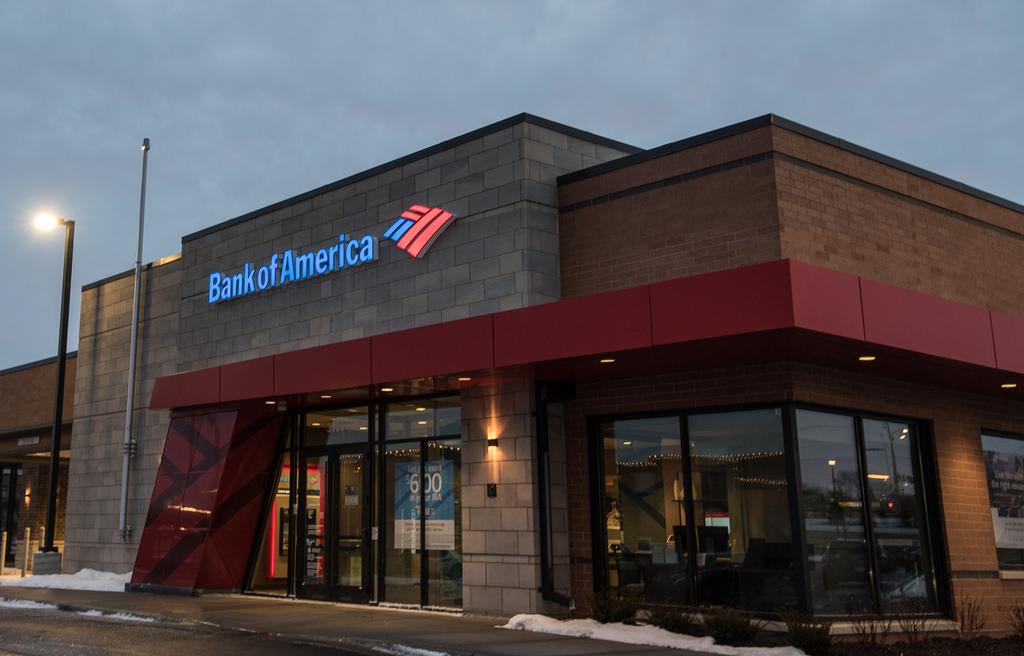 bank of america earnings report