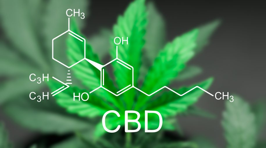 CBD Growth Could be a Long-Term Catalyst for Marijuana ETF
