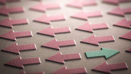 Hulbert: Sentiment a Good Sign for Contrarians