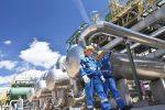 Portfolio Construction Where Do Sector ETFs Fit