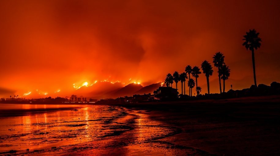 Seth Klarman's Canny Hedge Against Wildfires