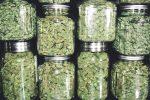 With The Marijuana ETF, Politics Matter