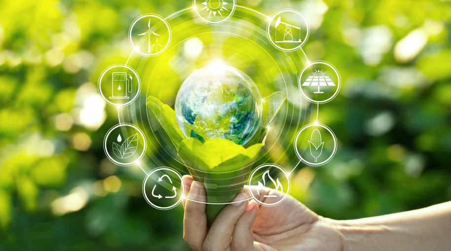 Green Bonds and the Pathway to Sustainability
