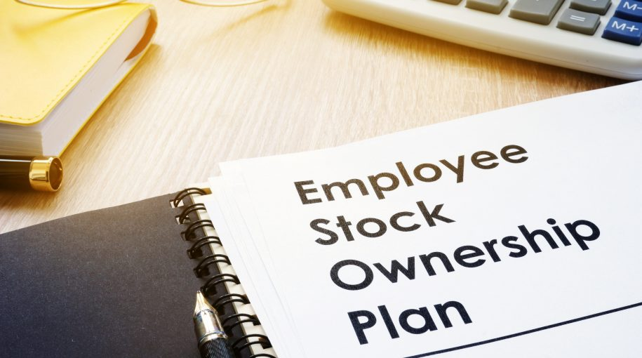 What Drives Company Income Smoothing? Check CEO Stocks And Options