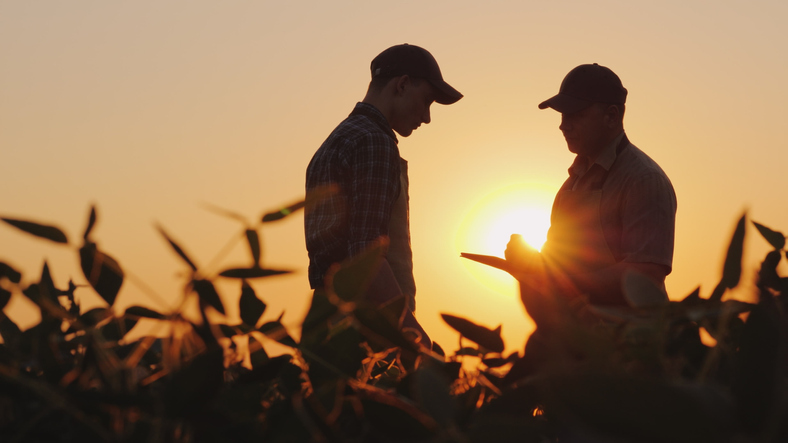 CORN ETF: Flawed USDA Report Plants Seed for Big Opportunity