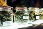 Global X Looks to Enter Cannabis ETF Competition