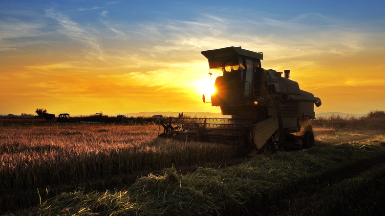 Assessing American Agribusiness ETF Issues