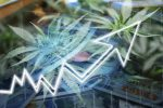 Cannabis ETFs Struggle, But One Manager Still Sees Opportunity