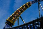 Market Roller Coaster Puts Smart Beta ETFs Back in Focus
