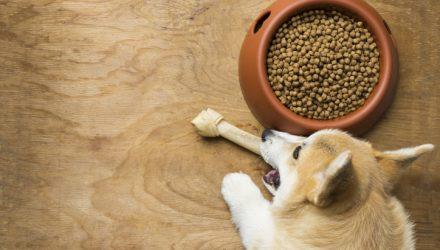 ProShares Pet Care ETF Still Looks Powerful