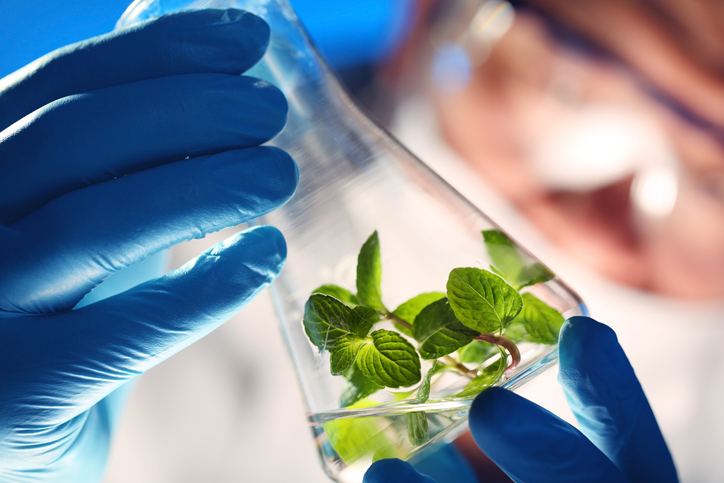 It Could be to Time to Bank on Biotech ETFs