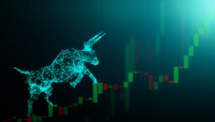 Marveling at the Equity Market's Remarkable Bull Run
