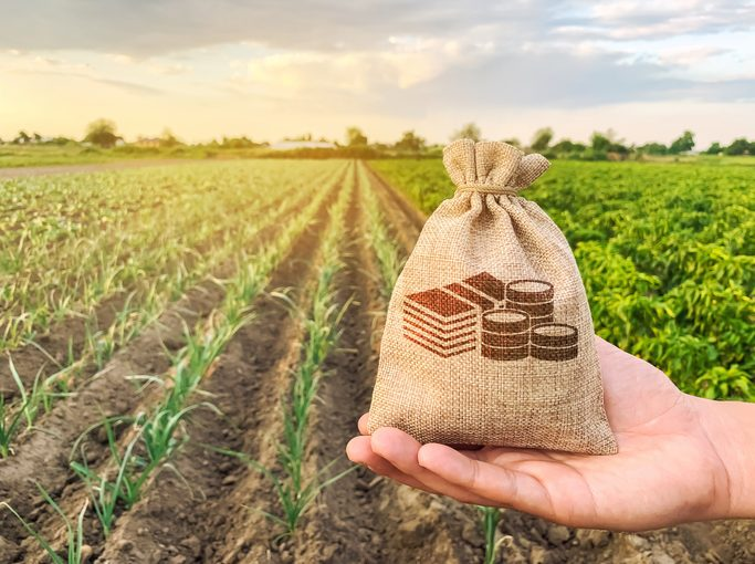 Agribusiness ETF Could Get a Corn-Cobbed Boost